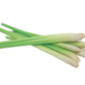 Lemongrass essential oil, certified organic