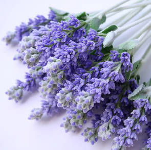 Lavender essential oil, cosmetic grade