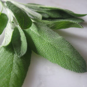 Sage essential oil, certified organic
